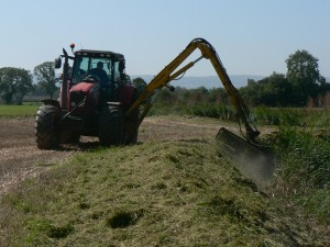 Weedcutting along Cannington Brook